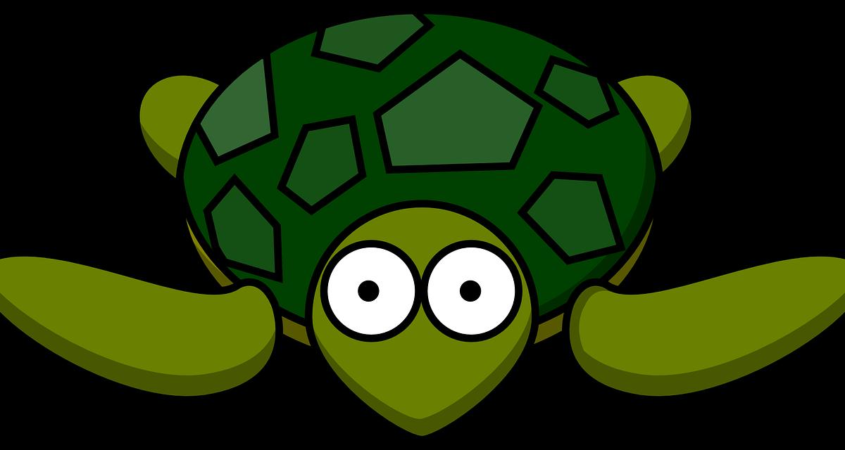 3隻烏龜的故事