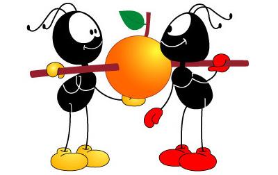 螞蟻怎麼說?